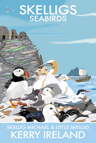 Skelligs Seabirds Poster