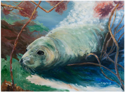 Painting-Seal-2014-FB