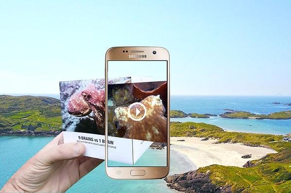 Augmented-example.jpg