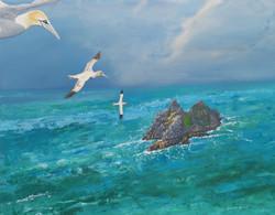 gannet-painting-01-03-16