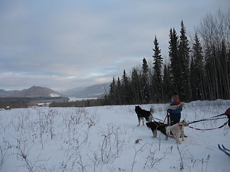 Mushing overlooking Eagle.jpg