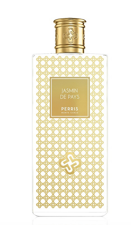 Jasmin de pays - PERRIS