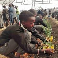 Sowetan School Grows Greatness
