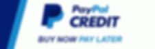 paypalbnpl.png