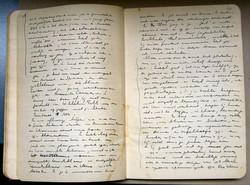 Son journal