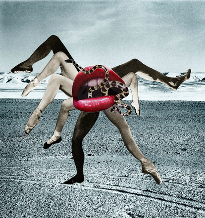 Collaborative collage, Deborah Kelly and Angela Goh