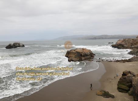 Point Lobos, Northern California
