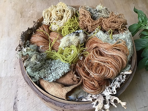 Dyeing with Lichens