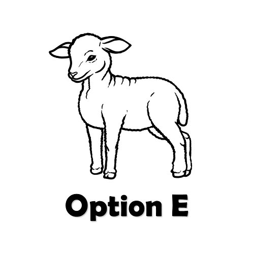 Option E - Updated Vendor Contract