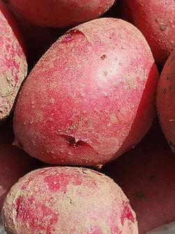 Potatoes, 2# bag