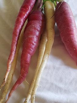 Rainbow carrots, bundle