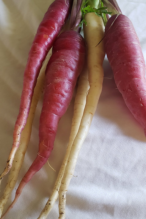 Rainbow carrots, bundle