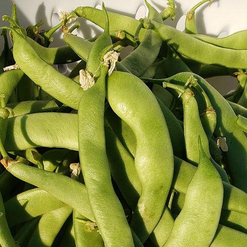 Green beans, flat, 1#