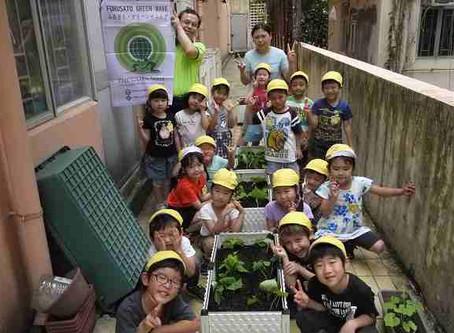 オイスカ香港日本語幼稚園-蕃薯種植 [Planting Sweet Potato]