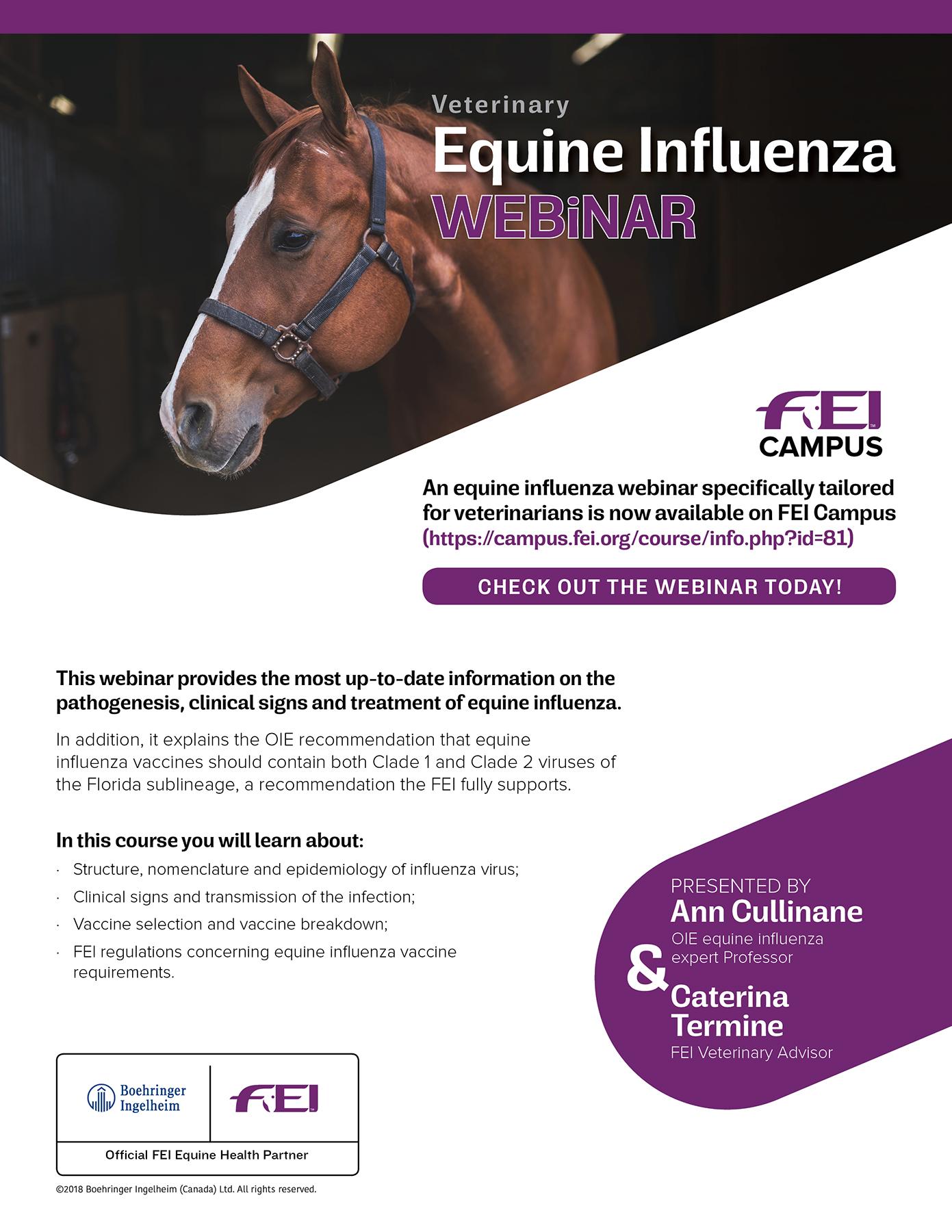 Equine Influenza Vet Webinar FEI