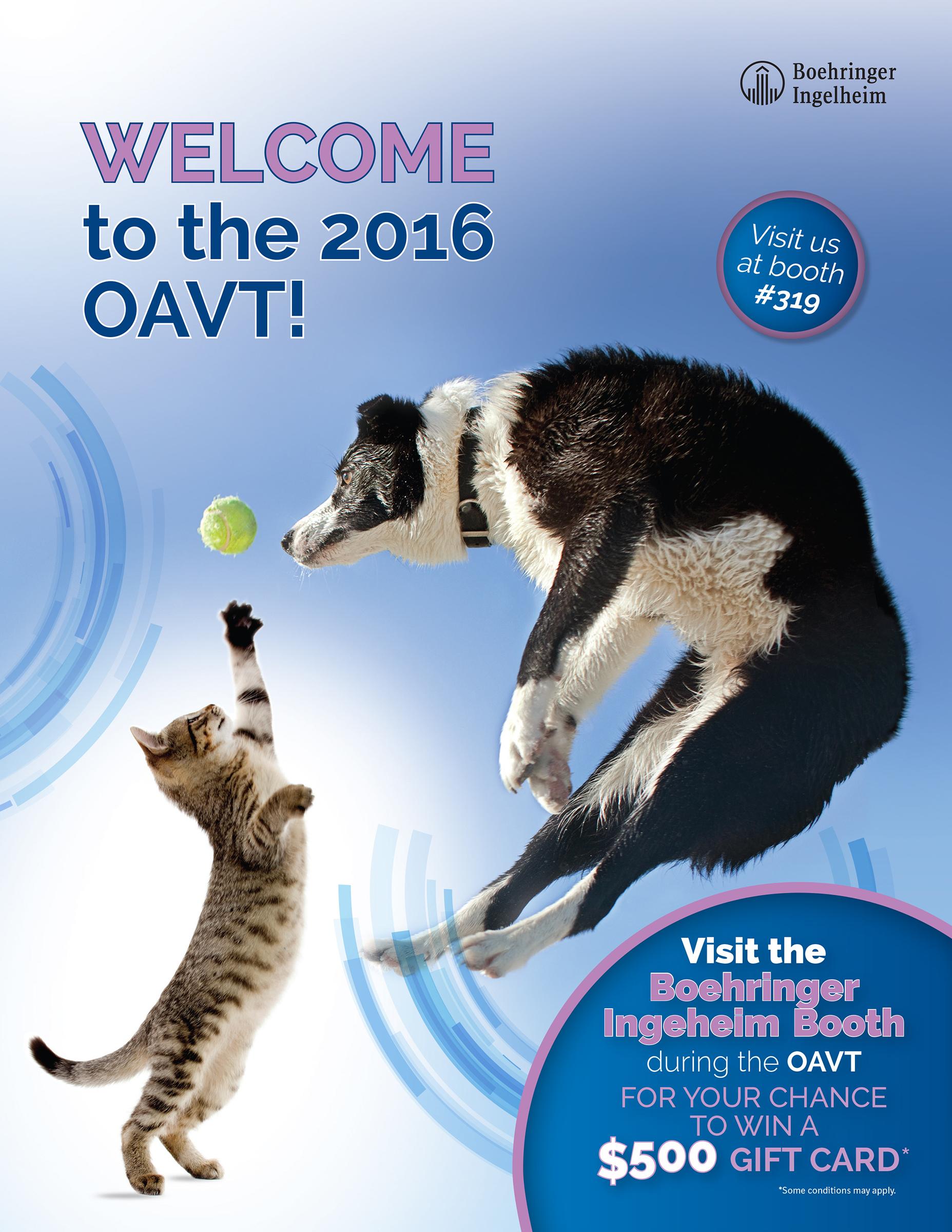 OAVT Flyer