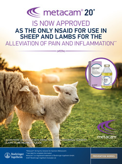 Metacam 20 Sheep Claim Ad
