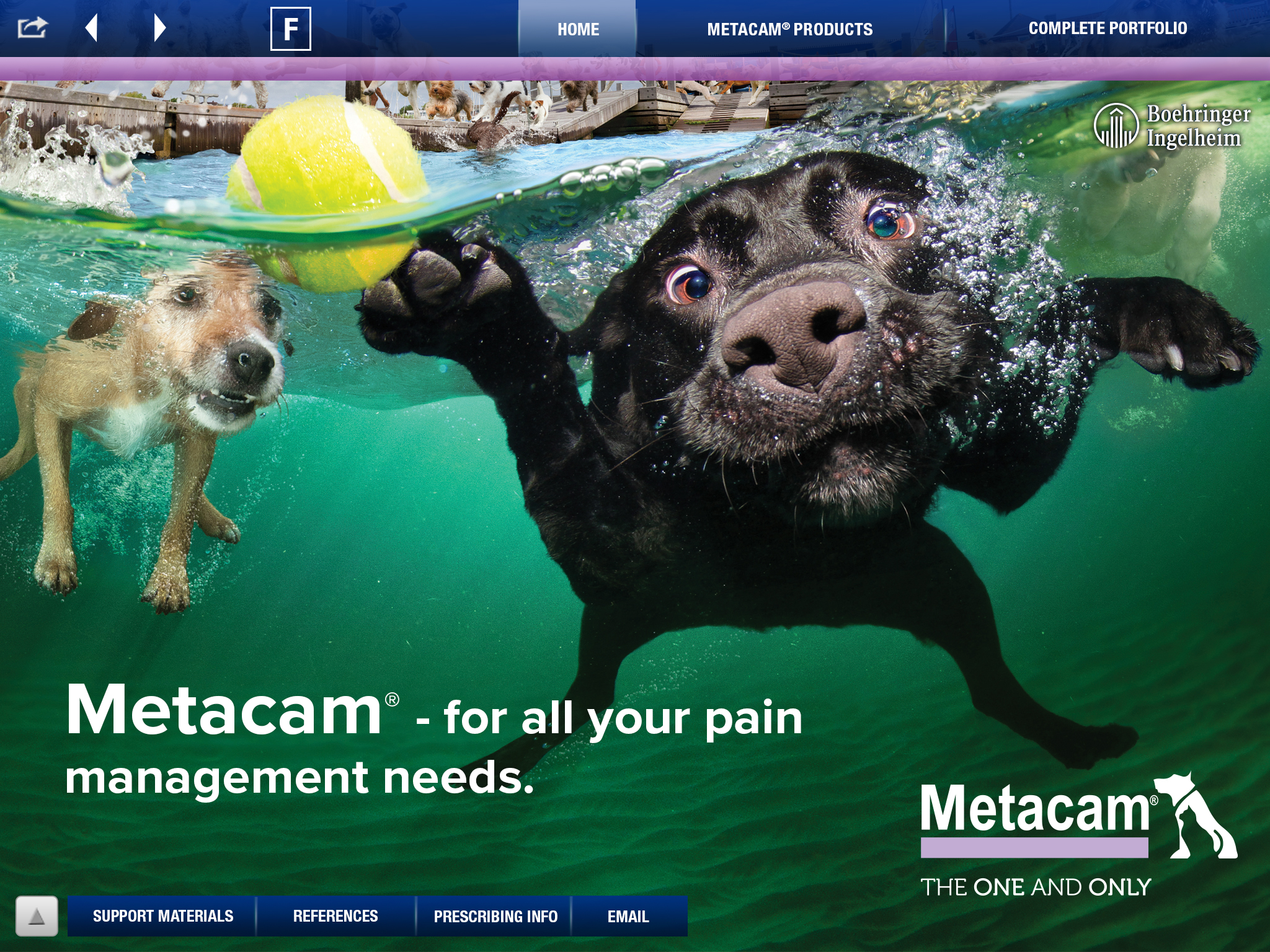 METACAM Small Animal iREP