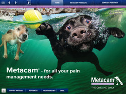 METACAM Small Animal iREP