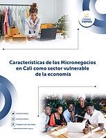 Portada Micronegocios_Mesa de trabajo 1.