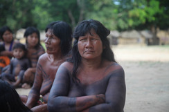 Resistance and Resilience of Indigenous Peoples