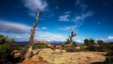 Moab Sky.jpg