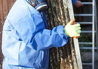 Worker Carrying Asbestos Board_edited.jpg