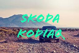 SCHWOERER_SKODA-KODIAQ.jpg