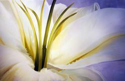 lisas+flower