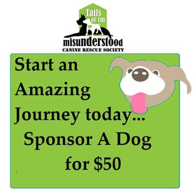 Sponsor a Single Dog