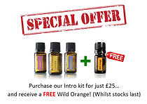 special offer img.PNG