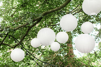 Paper lanterns Tree Installation