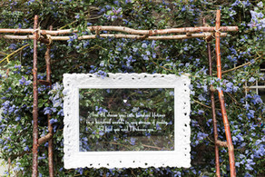 White frame ladder arch
