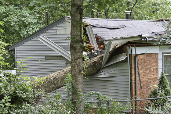 Damaged Property Relief from County Auditor David Thomas