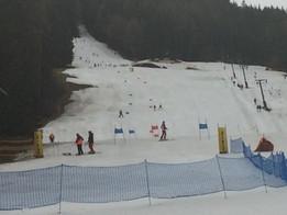 Sensationeller Punktezuschlag (14,54) beim ÖWSC UNIQA Riesentorlauf am 10.3.2019 in Turnau