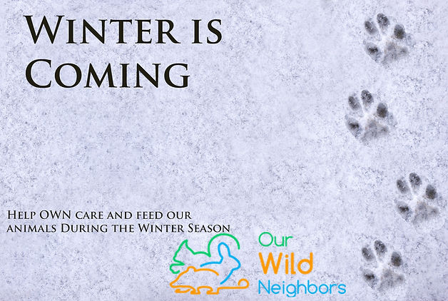 WinterisComing.jpg
