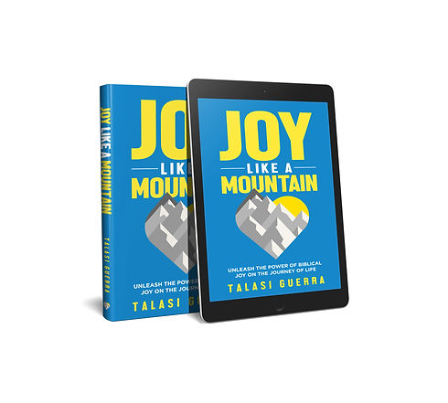 Joy Like A Mountain_3D opt2.jpg