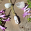 Thumbnail: White Clear Quartz with Gold Necklace