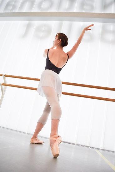 SAB Mesh Ballet Skirt