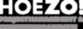 HOEZO_witzilver.png