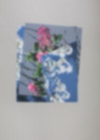 I am the door Diane Bielik photomontage blossom