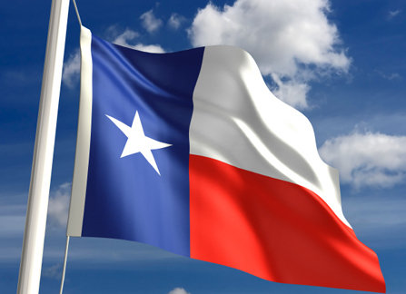 Outdoor Texas Flags
