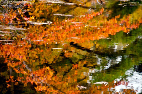 Wonderous Reflections in a Peterborough Pond