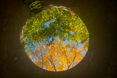 Looking Up My Silo