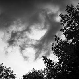 Summer Afternoon Gargoyles