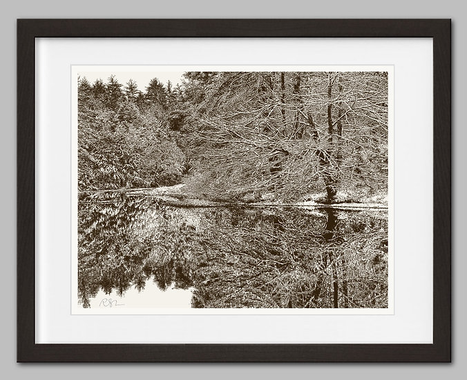 First Snow - Signed Print