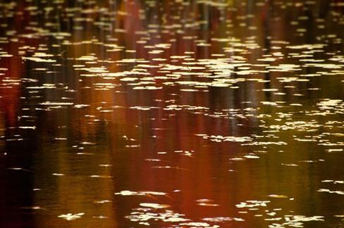 Reflections in the Minniwawa