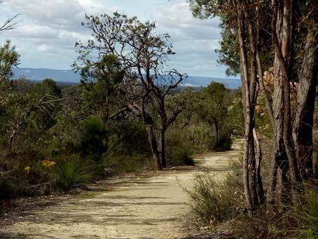 Koondoola Regional Bushland
