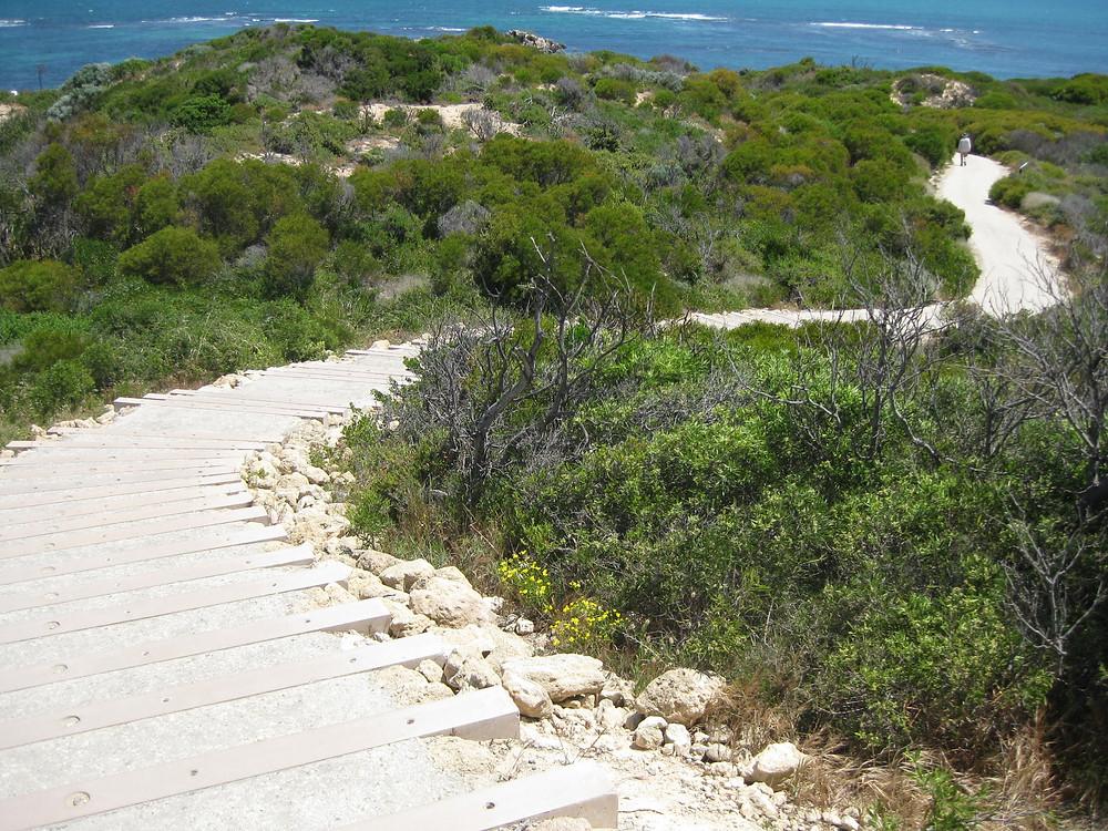 Steps So Observation Point