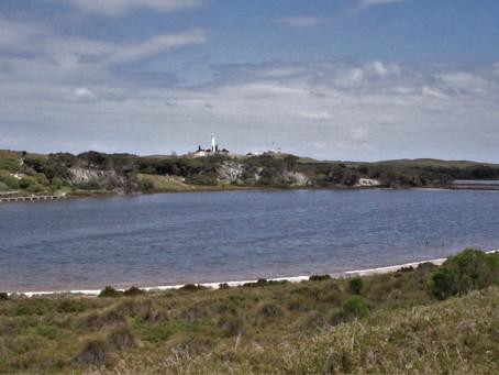 Gabbi Karniny Bidi  - Rottnest Island